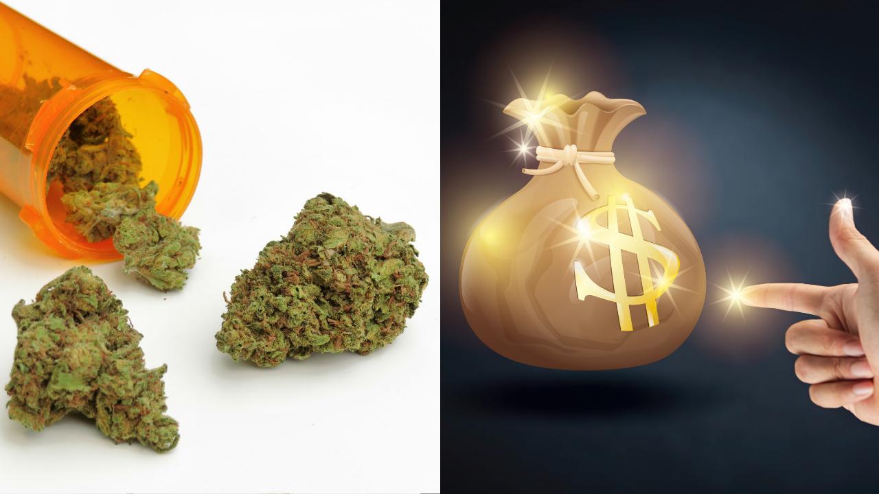 Wie man mit Cannabis legal viel Geld verdient